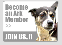 Join The Ark - Become a Member